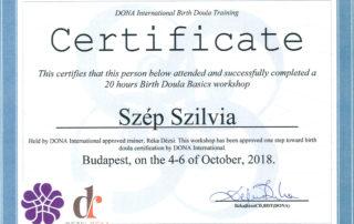 Certificato Doula